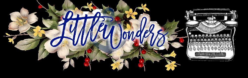 Blog Viiish - Nova parceira do blog: Little Wonders!