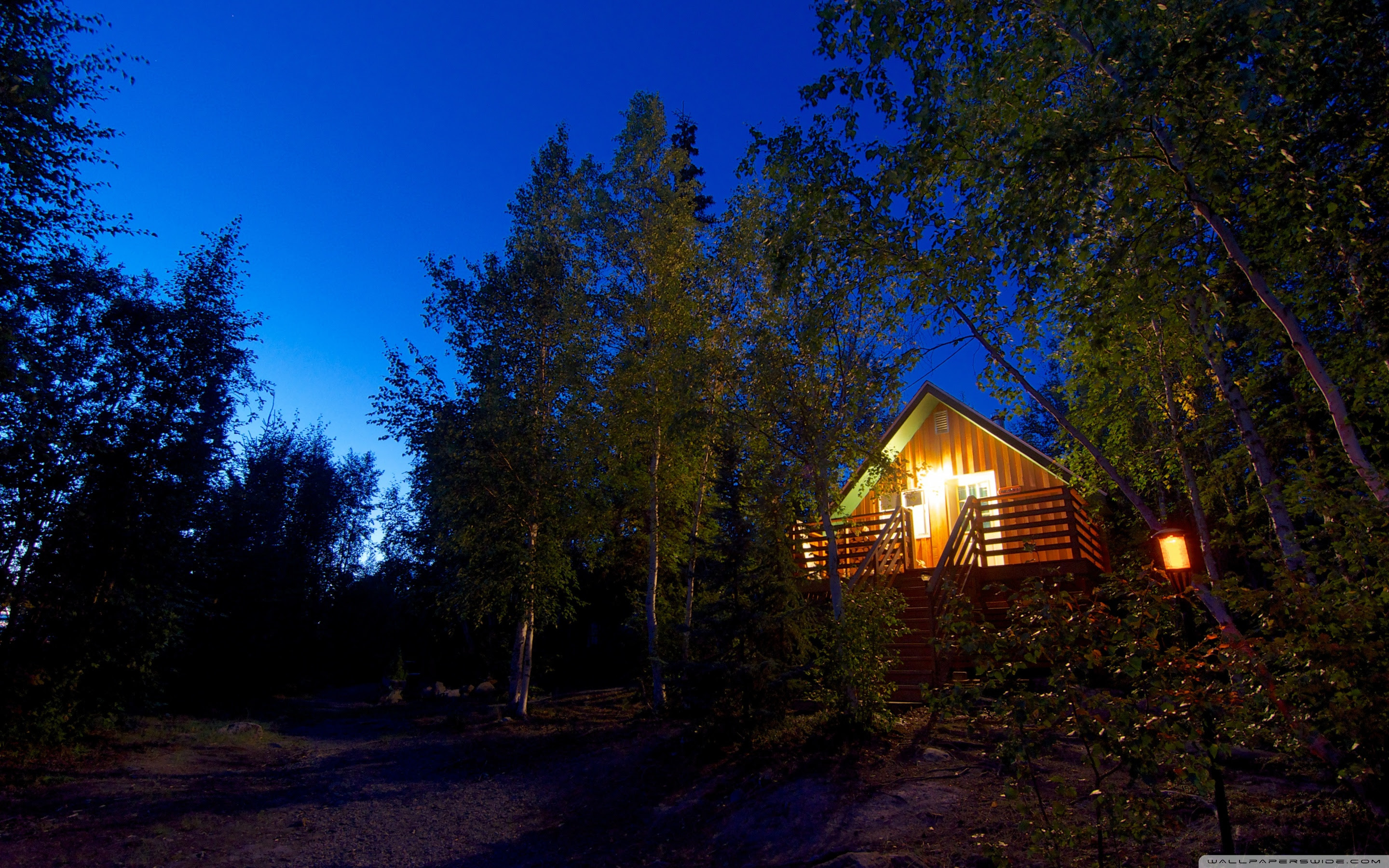 Cabin In The Woods Night Ultra Hd Desktop Background Wallpaper For