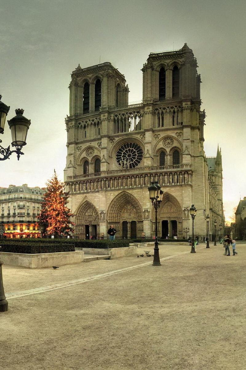 Xpx Notre Dame Cathedral Wallpaper