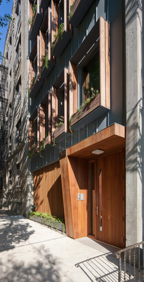 ShowCase: 253 Pacific Street by James Cleary Architecture ...