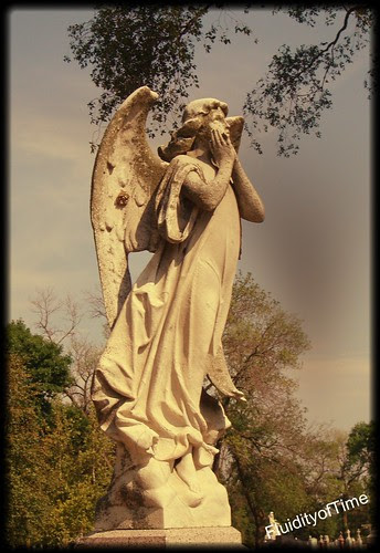 angel with wasps on wing 2