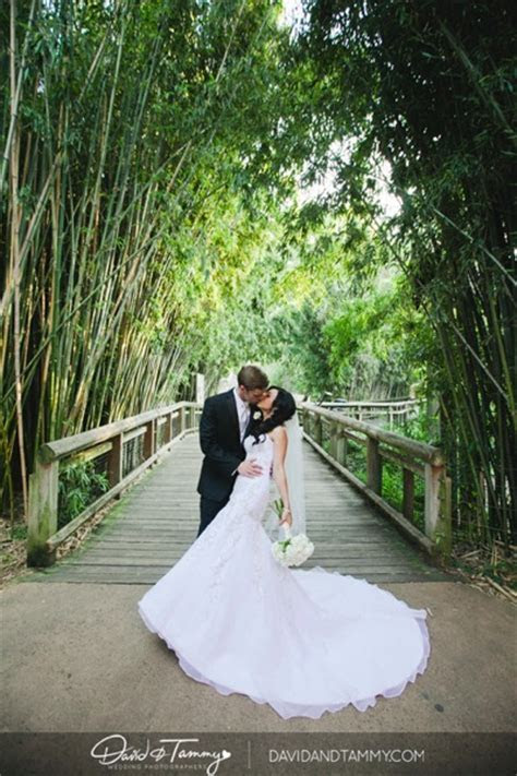Memphis Zoo Wedding: Juliet & Mike   Mid South Bride