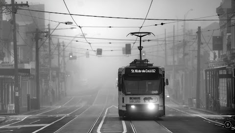 When and How to Shoot Black and White Photographs