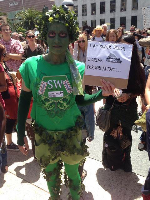 #Monsanto super weed #MarchAgainstMonsanto  #GMO #MAM25 #MAM #m25 #noGMO