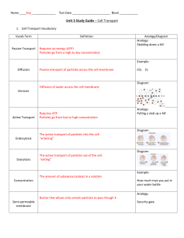 Protein Synthesis Worksheet Answer Key 1-20 / 19 Best ...