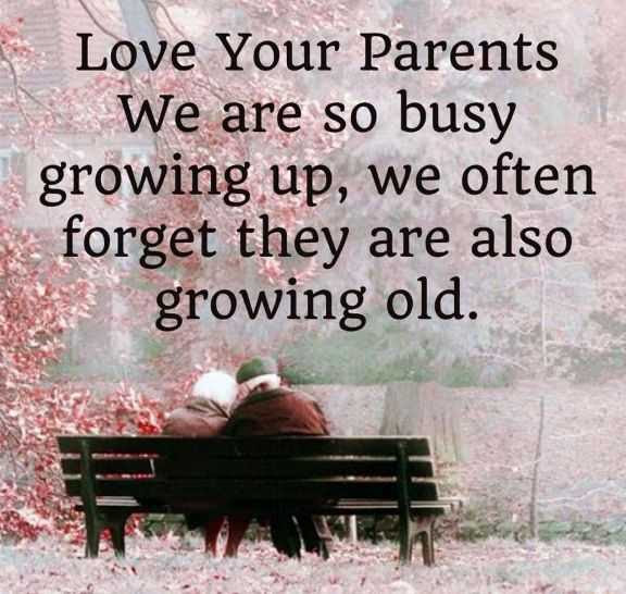 Love Your Parents We Are So Busy Growing Up We Often Forget They