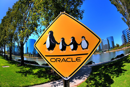 Penguin Crossing by illuminaut.