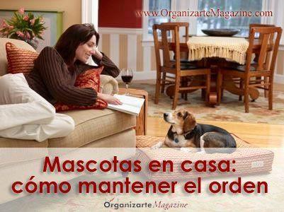 mascotas-y-hogar-ordenado