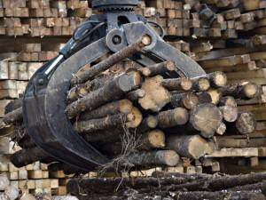 Wood prices on the rise