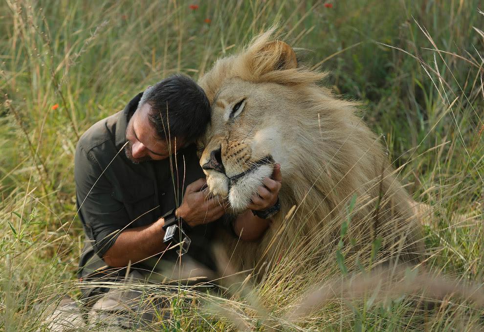 Знаменитий Кевін Річардсон і його нові фотографії спілкування з левами