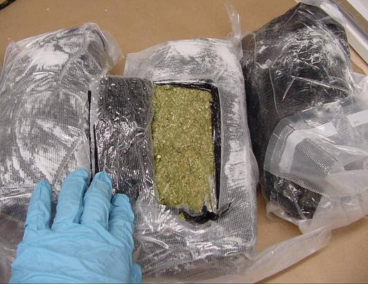 1 Pound Of Weed In A Bag 8259 Usbdata