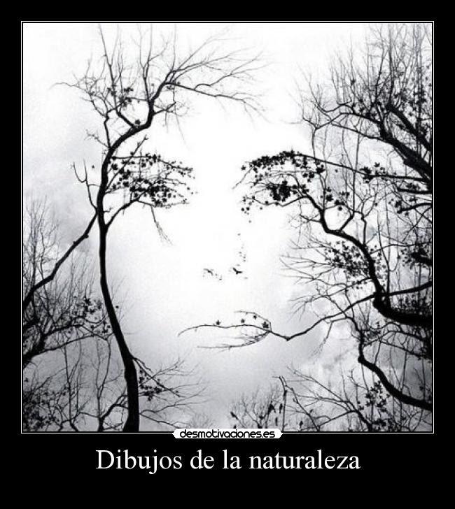 Dibujos De La Naturaleza Desmotivaciones