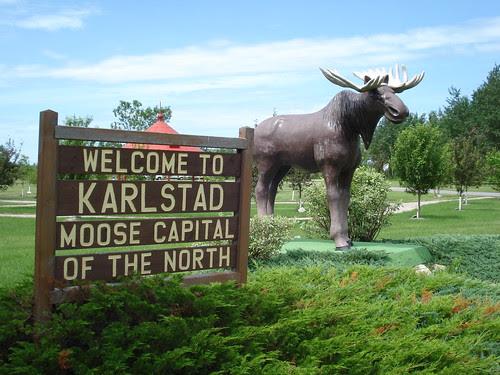 Moose Capital
