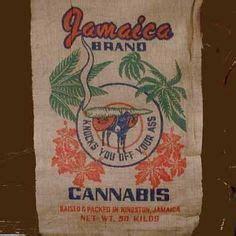44 Best Dreadlock Rasta Jamaican Party images   Jamaican