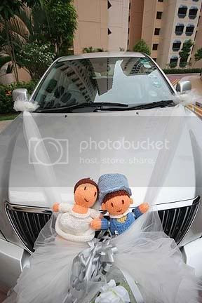 hand knit wedding doll couple on car