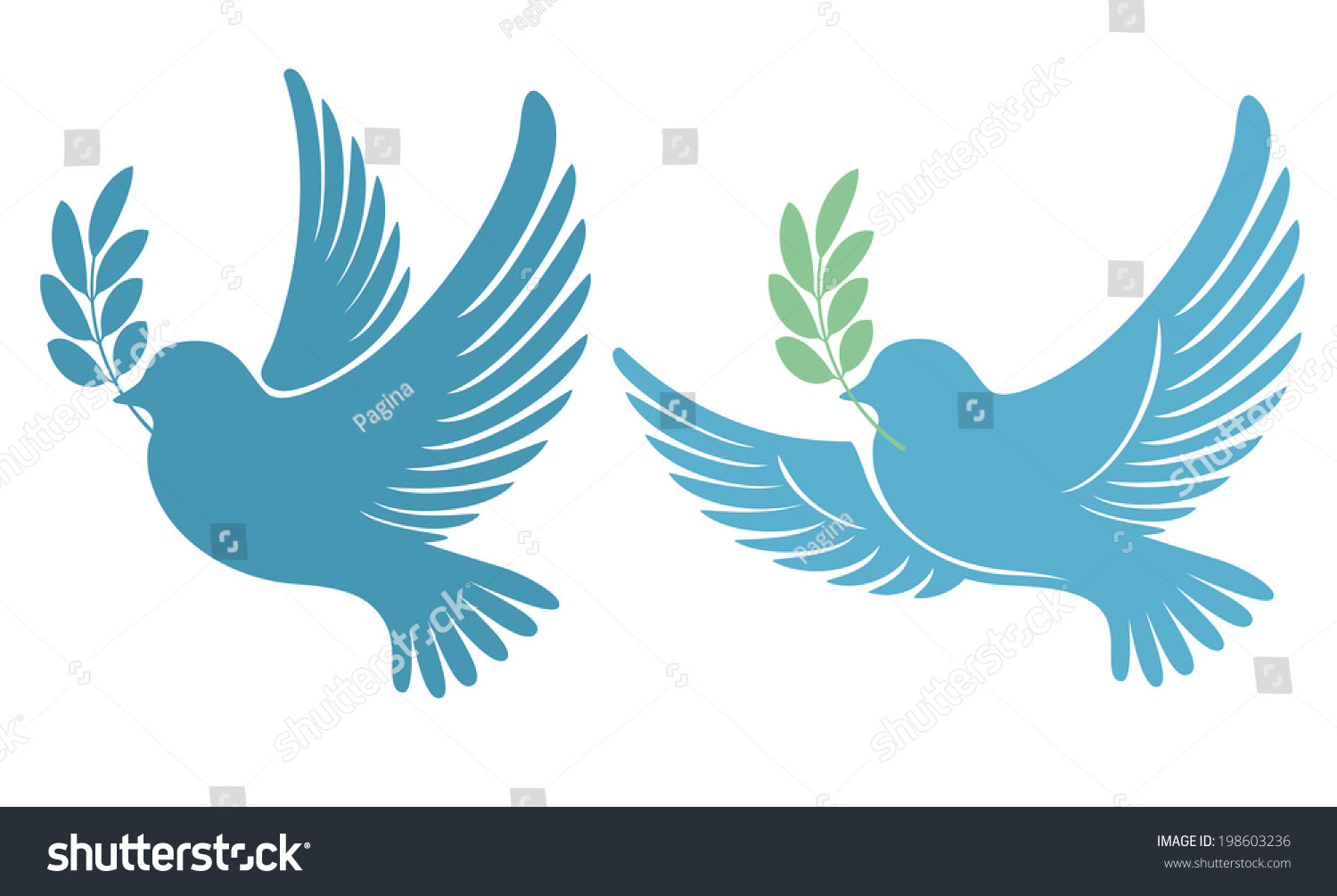 53 Symbol Of Peace Dove With Olive Branch With Dove Of Peace Branch