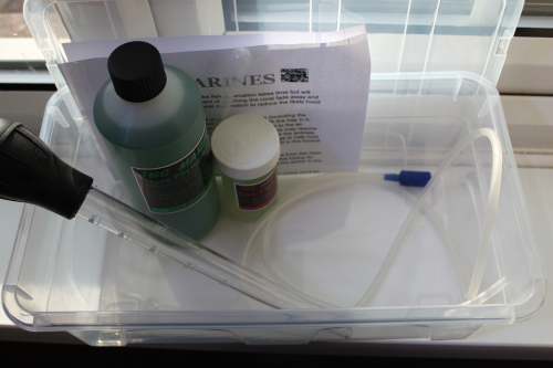 Moina Salina Water Flea Culture Kit Grow Your Own Water Fleas