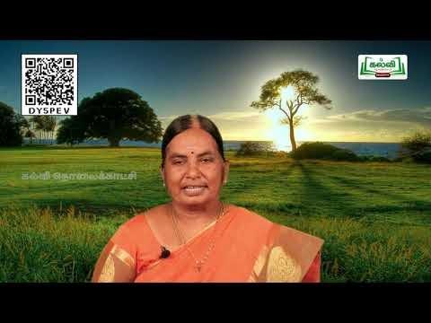 7th Tamil கவிதைப்பேழை இன்பத்தமிழ்க்கல்வி  இயல் 2 பகுதி 1  Kalvi TV