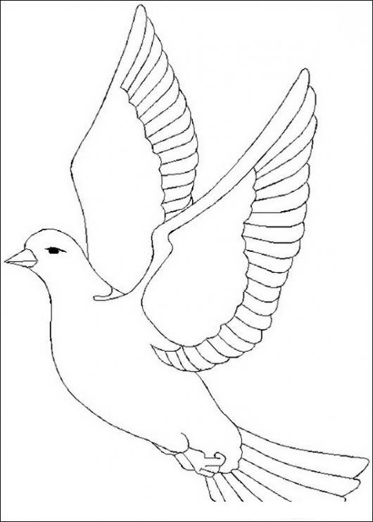 Paloma Volando Colorear Aves Dibujo Para Colorear De Una Paloma
