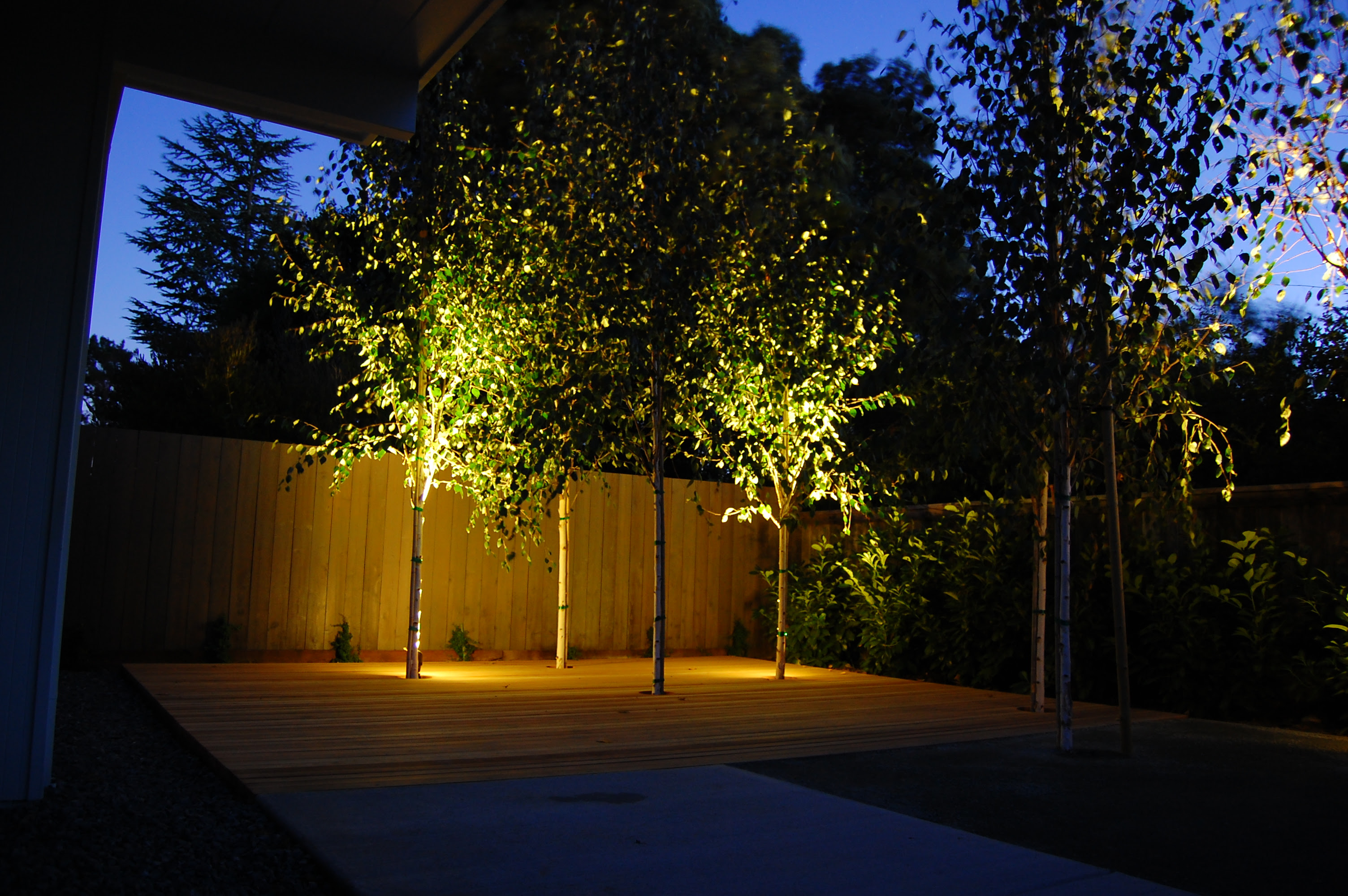Flick a Switch for Evening Excitement: The Edison Outdoor Lighting Package