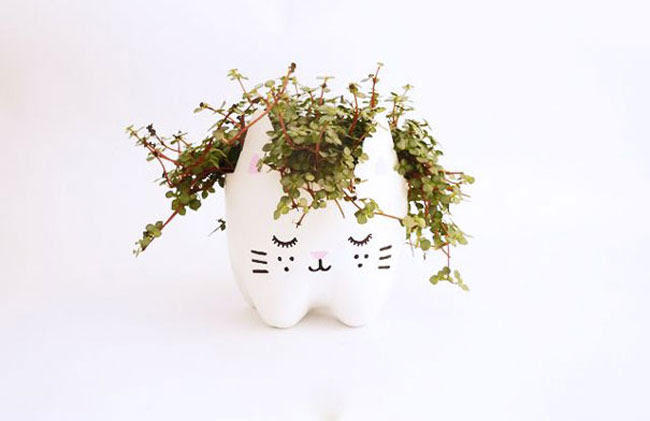 cool-pudelid-recycling-cat-taim