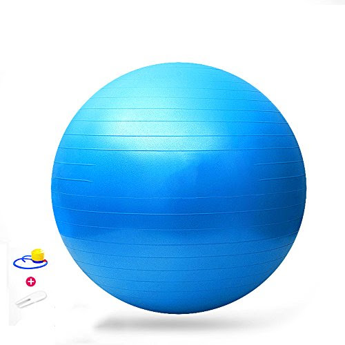 Lmeno Yoga Ball 65cm Exercise Gymnastic Fitness Balance Aerobic Ball for GYM Yoga Pilates Pregnancy Birthing Swiss+Air-Pump -- Blue/ Purple/ Pink