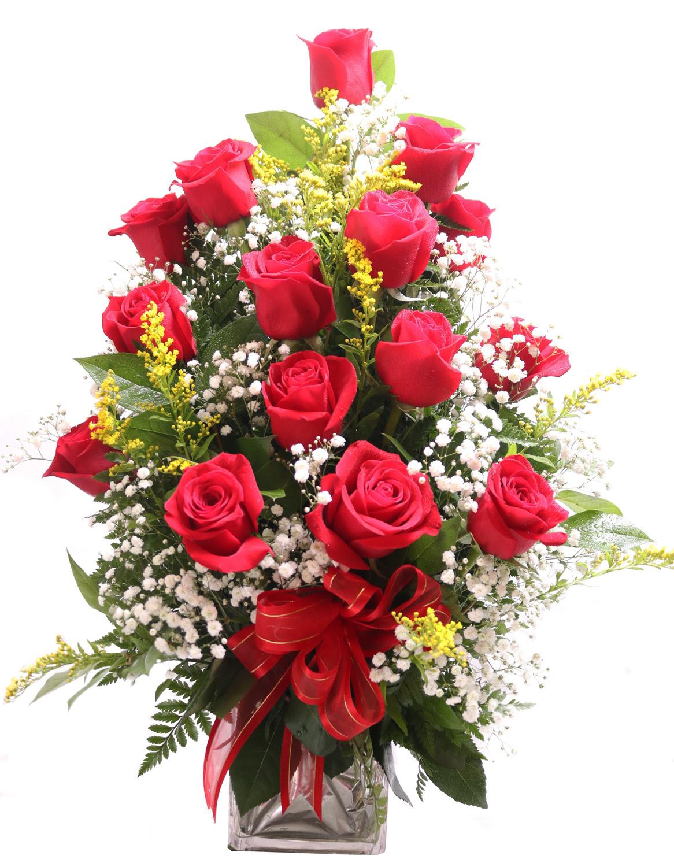 12 Rosas Rojas Triangular Iris Florist
