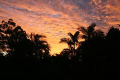 Sunset in Lawnton 5 of 6