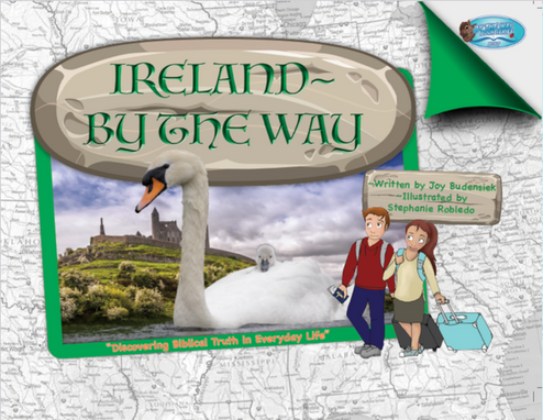 By The Way book Ireland