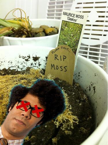 RIP MOSS