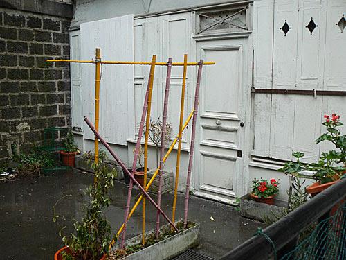 petti jardin 2.jpg