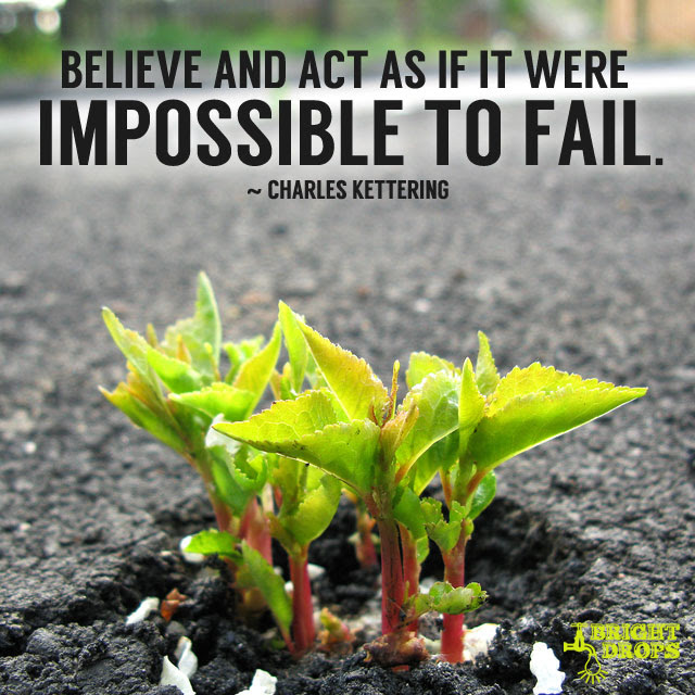 """""""Believe and act as if it were impossible to fail."""" ~Charles Kettering"""