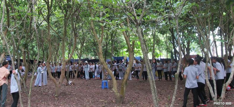 Trại sinh trong rừng chủa Bảo Quang - Hình PTTPGQT