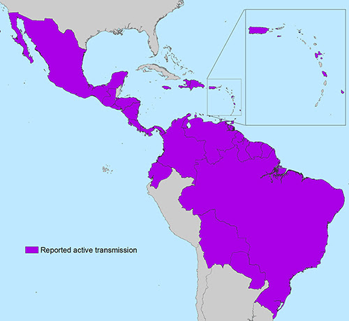 Map showing countries in the Americas that have reported active Zika virus transmissions.