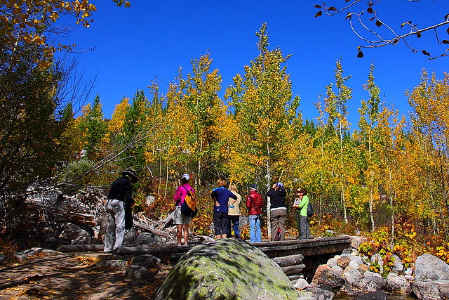 IMG_8075 Taggart Lake Trail, Grand Teton National Park