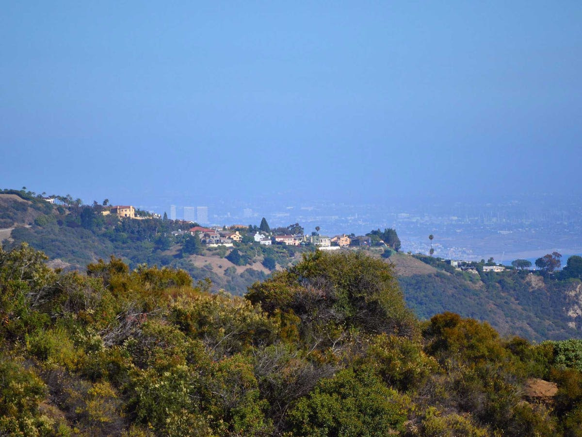Spiegel grew up in the Pacific Palisades, a ritzy Los Angeles enclave just east of Malibu. He was the oldest son of two lawyers, though his parents divorced when he was in high school.