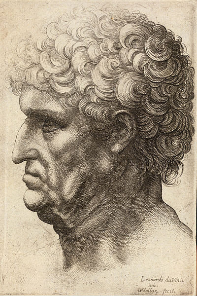File:Wenceslas Hollar - Man with thick curly hair (State 2).jpg