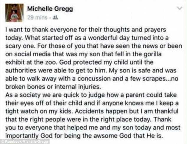 The boy's mother wrote a Facebook post saying her son suffered a concussion and a few scrapes. She defended her role as a parent and called the incident an accident