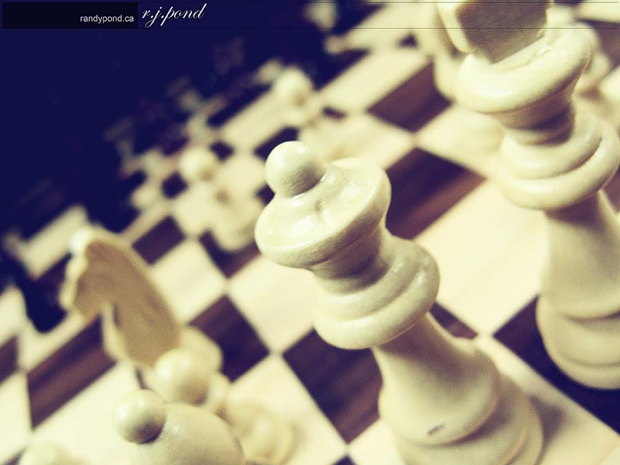 ~ 82/365 Chess-a-licious ~