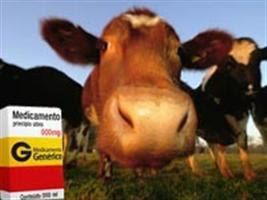 Receituário será exigido para compra de produtos veterinários especiais