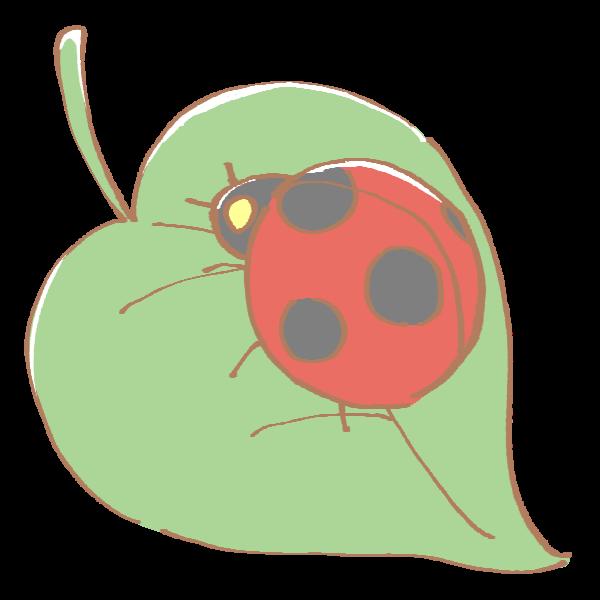 葉っぱの上のてんとう虫のイラスト かわいいフリー素材が無料の