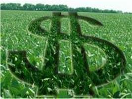 Produtores rurais têm condições especiais para regularizar dívidas com o BB