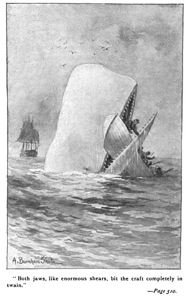 File:Moby Dick p510 illustration.jpg
