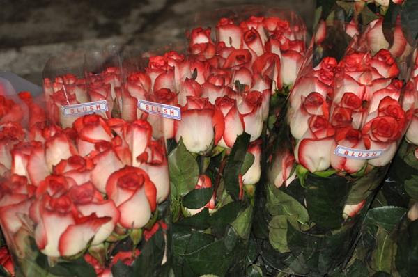 Image result for mujer con flores