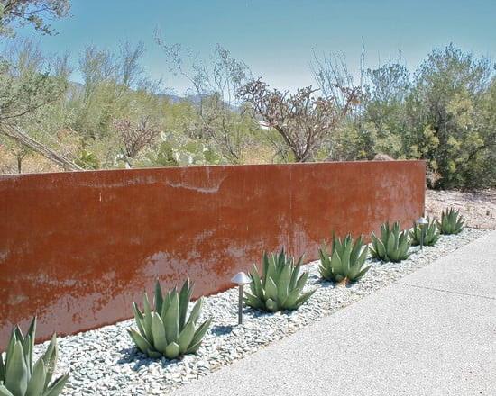 Modern Trends: Cactus Garden Ideas & Tips | The Garden Glove
