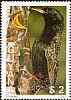 Common Starling Sturnus vulgaris