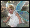 How to Make Fairy Wings : Halloween Costumes Craft Ideas