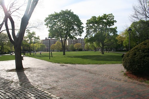 Cambridge Common (Park)