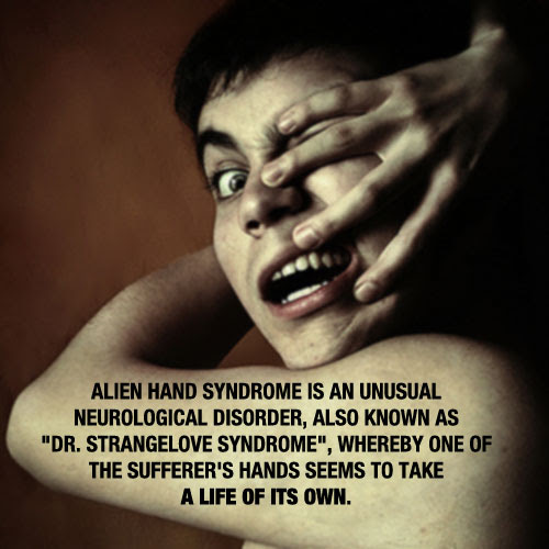 Real fact about Alien-Hand-Syndrome