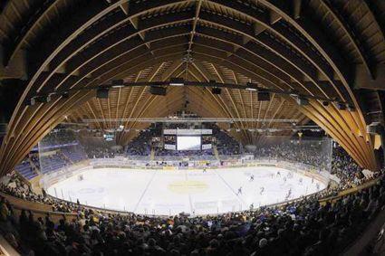 Vaillant Arena, Vaillant Arena